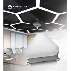 LN23-00600