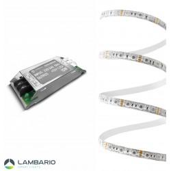 LY02-00350