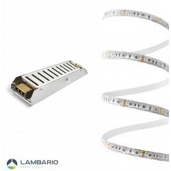 LY02-01500