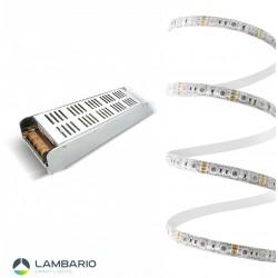 LY02-02500