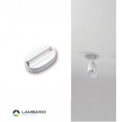LY50-08